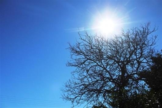 Temperatura Pode Chegar Aos 30C No Oeste Durante A Tarde Desta