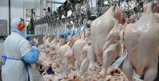 União Europeia proíbe exportação de frango de 20 frigoríficos brasileiros